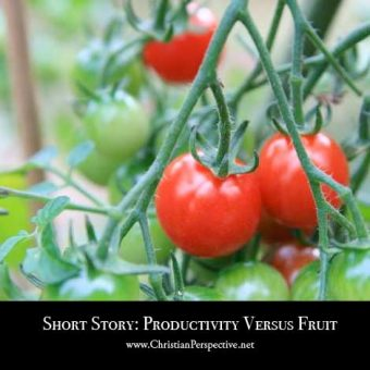 Short Story: Productivity Versus Fruit